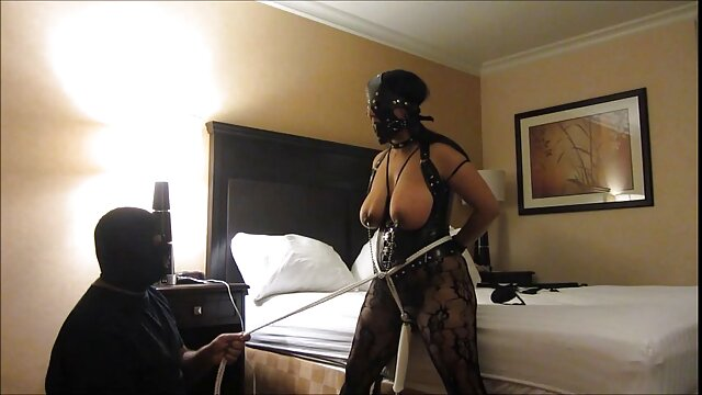 La lama è via video trans da scaricare gratis